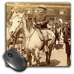 3dRose 1903 U.S. President Teddy Roosevelt on Horseback in Y