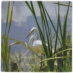 3dRose LLC 8 x 8 x 0.25 Inches Mouse Pad, Heron in Hiding