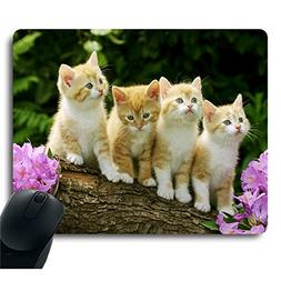Four Cute Baby Cat Kitten Stand with Flower Customized Mouse