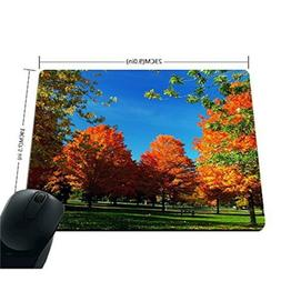 Apottwal Autumn Natural Orange Fall Trees Mouse Pad