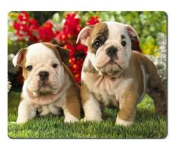 Bulldog Puppies dogs pets garden Mouse Pads Customized Made