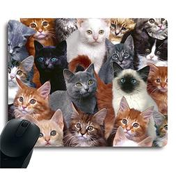 Cats Galore White Cat Black Cat Brown Cat Decorative Mouse P