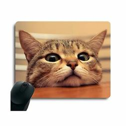 Curious Cute Cat Look at you with Eager Eyes on Table Custom