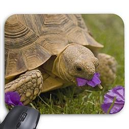 Custom Rectangle Mousepad Tortoise Sulcata Tortoise Mouse Pa