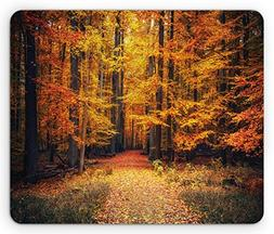 Ambesonne Forest Mouse Pad, Magical Fall Photo in National P