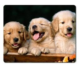 Golden Retriever dogs puppies pets Mouse Pads Customized Mad