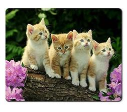 Kitten Flower Cute Funny Group Cat Animal Pet Mouse Pads Cus