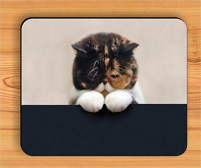 CAT A PRAYER REQUESTS MOUSE PAD -plu7Z