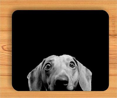 DOG DACHSHUND CURIOUS PET FUNNY MOUSE PAD -gyh8Z