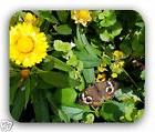 Yellow Flower Butterfly Anti-Slip Mouse Pad Gaming Mousepad