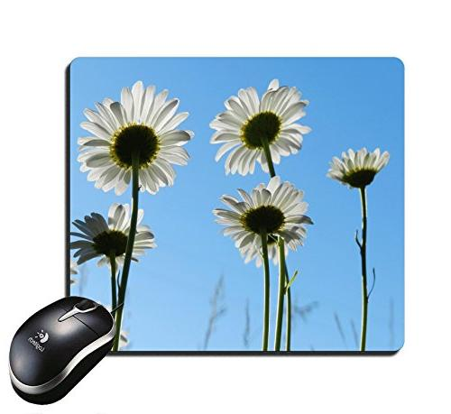 mouse pad long white anemone