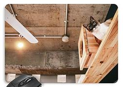 Lamp, Cat, Wood Cat Litter, Electric Fan, Iron Pipe Mouse Pa
