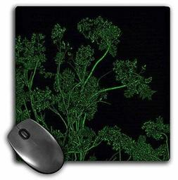 3dRose LLC 8 x 8 x 0.25 Inches Mouse Pad, Green and Black Tr