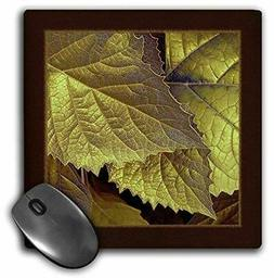 3dRose LLC 8 X 8 X 0.25 Inches Mouse Pad, Gold and Bronze Me