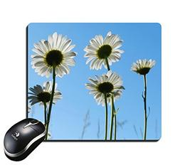 Mouse Pad Long White Anemone Flowers with Blue Sky Backgroun